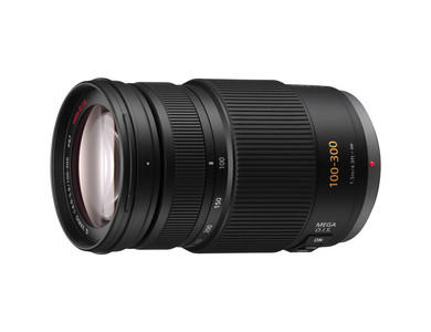 Panasonic 100-300mm f/4-5.6 OIS