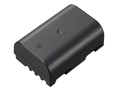 Panasonic DMW-BLF19 Battery
